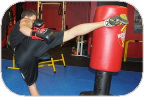 Free Standing MMA Bags Review