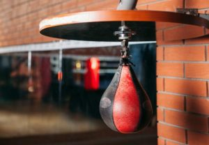 best speed bag review