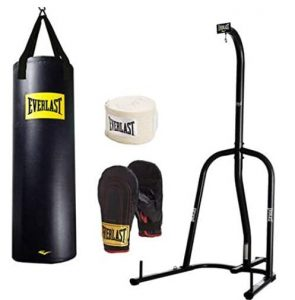 Everlast portable heavy bag and stand review