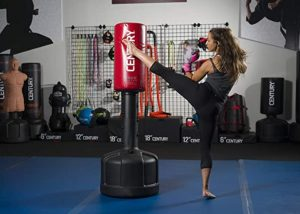 best portable punching bags