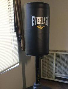 Everlast brand Omniflex bag for home