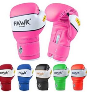 Hawk kickboxing gloves for children beginner use