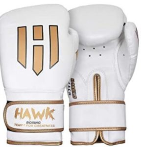 Hawk white kickboxing gloves for new fighters