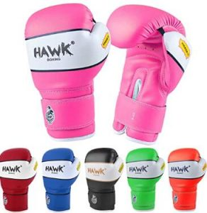 Hawk 6oz gloves for pad work
