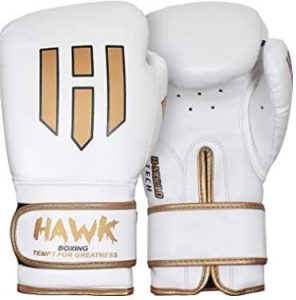 Hawk Sports 16 oz gloves for heavy bag