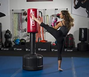 century original wavemaster standing punching bag